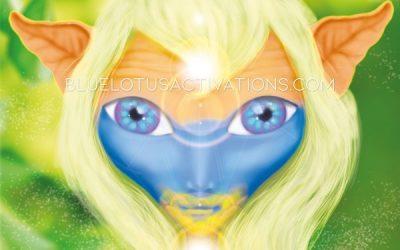 Meet EliCiA – Blue Star Hybrid in Light